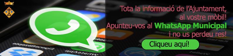 WhatsApp Municipal | Vilobí d'Onyar