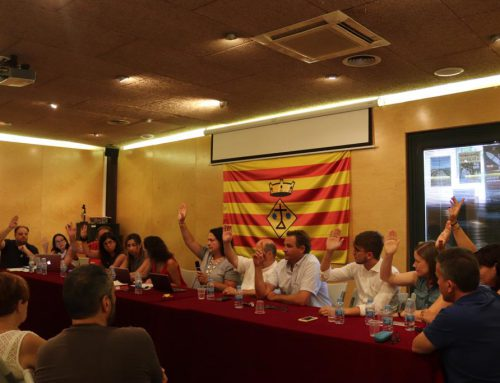 Ple municipal ordinari